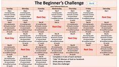 Beginner's workout challenge