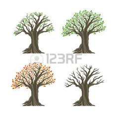 logo tree: Trees in four seasons realistic decorative icons set isolated on white background. Design elements. Realistic image.