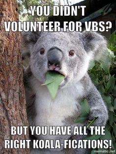 VBS Volunteers~ Koala