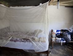 A Peace Corps Volunteer's bed is covered by a mosquito net in Ecuador.