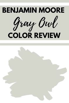Learn everything you need to know about the fabulous Benjamin Moore Gray Paint Color Gray Owl. I'm talking undertones, complementary colors, and more! #gray #homeideas # paintcolors #interior #neutral Neutral Gray Paint, Light Grey Paint Colors, Best Gray Paint Color, Greige Paint Colors, Popular Paint Colors, Paint Colors For Home, Paint Colours, House Colors, Room Colors