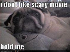 I dont like scary movies...