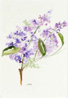 violet- lilac- lavander?