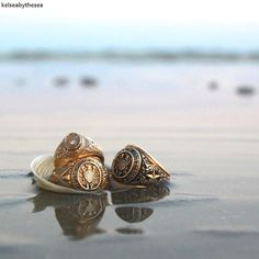 Aggie rings, shell, on the beach, ocean @kelsjanphoto
