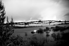 barbed wire.  Location: Vila Real, Portugal. Photo by André S., 2010