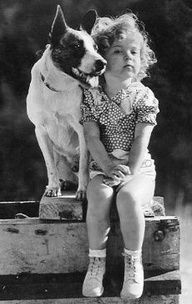 Dog Buster and Shirley Temple. Shirley Temple (born was a well known child actress, singer and dancer. As an adult Shirley Temple Black became Ambassador to Ghana and Czechoslovakia. Classic Hollywood, Old Hollywood, Vintage Dog, Vintage Children, Vintage Black, Famous Faces, Belle Photo, Black And White Photography, Old Photos