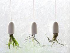 hängende blumentöpfe zimmerpflanzen luftige
