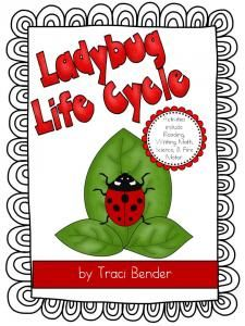 Ladybug Life Cycle Unit-This giveaway promotion ends at 11:59:59PM CST on 07-08-2013