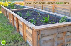 Wooden Pallet Craft: How to Make a Garden Grow Box