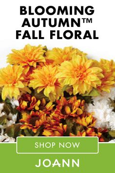 If you're looking to bring that fall flare to your home decor, then look no further than Blooming Autumn™ Fall Floral at JOANN! Find cute and seasonal pieces like their Mini Cotton Shell Wreath, Succulent Arrangement in Cream Pumpkin, and so much more. Succulent Arrangements, Succulents, Porch Decorating, Decorating Your Home, Fall Room Decor, Home Decor, Shell Wreath, Fall Projects, Festival Decorations