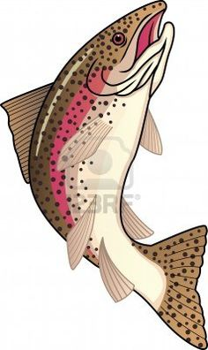 Trout fish...for you Austin