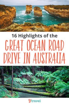 16 Highlights of the Great Ocean Road Drive in Australia. The Great Ocean Drive is one of the best road trips in Australia and the world. Don't miss these highlights when you go + a few tips for your GOR itinerary Melbourne, Sydney, Air Travel Tips, Travel Tips For Europe, Cheap Travel, Travel Ideas, Travel Destinations, Australia Travel Guide, Visit Australia