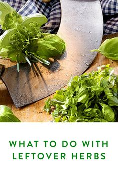 What to Do With Leftover Herbs. Waste not, want not. Here's how you prevent all your herbs going bad.