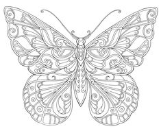 Coloring book pages Butterfly Pictures, Butterfly Art, Butterfly Design, Coloring Book Pages, Printable Coloring Pages, Coloring Sheets, Embroidery Patterns, Hand Embroidery, Butterfly Coloring Page