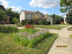 Rain Garden, Sidewalk, Building, Plants, Pictures, Gardens, Walkway, Photos, Buildings