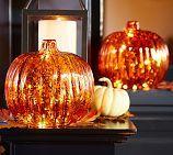 Lit Led Pumpkin
