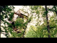 Tennessee Crossroads: Treehouse (2516-3)