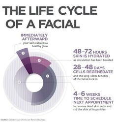 How Often Should You Really Get Facials? The Life Cycle of a Facial (source: Renee Rouleau, celerity aesthetician).The Life Cycle of a Facial (source: Renee Rouleau, celerity aesthetician). Facial Treatment, Skin Treatments, Treatment Rooms, Sala Facial, Skin Tips, Skin Care Tips, Mk Men, Serum, Esthetician Room