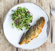Grilled mackerel fillets