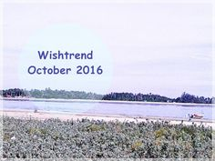 Wishtrend October 2016 coupon&discount codes