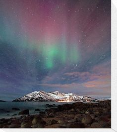 beautiful northern lights in Norway
