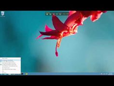 NEW START8 BETA BRINGS THE START MENU BACK IN WINDOWS 8 [VIDEO]    With the release of Windows 8 and its brand spanking new Metro interface, Microsoft will all-but get rid of the Start Menu off for good. At least, that's the plan. ...