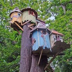 Treehouse envy