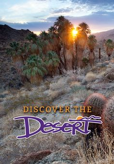 BLM California Launches Discover the Desert... | My Public Lands