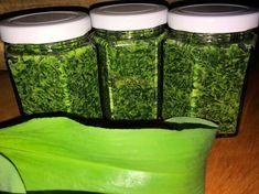 Orfűi recept nyomán készül a finom medvehagyma pesto Pesto, Allium, Ketchup, Mason Jars, Food Porn, Cooking, Plants, Kitchen, Mason Jar