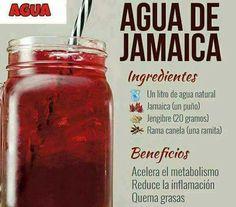 Agua de jamaica para bajar de peso