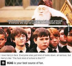 Wtf is wrong with that school?! #harrypotter #hogwarts