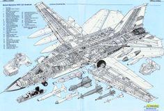 F-111 Anatomy