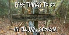 Here is the perfect must do list of FREE activities in Ellijay, Georgia! There is something for everyone on this list!