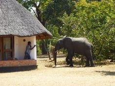 Lifupa Lodge, Kasungu National Park