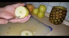 Narguile Caseiro com frutas muito facíl de fazer -    💖 Este Post é baseado no vídeo do Canal Papo de Famoso publicado no Youtube, em 2016-07-08 17:15:02 💖    [ep... -  #panetone #receitasdoyoutube #vivendodebrigadeiro - https://vivendodebrigadeiro.com.br/narguile-caseiro-com-frutas-muito-facil-de-fazer/