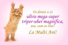 Felicitare pisicuta haioasa zi de nastere
