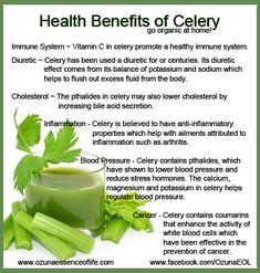 Twitter / OzunaEOL: Health Benefits of Celery... ...