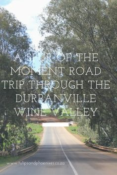 So you think the Cape Winelands are only confined to Stellenbosch and Franschhoek? Wrong! The Durbanville Wine Valley is a stones throw from the Cape Town city center and equally beautiful. Click to read about our road trip through the Durbanville Wine Valley that ended up in the town of Wellington! And the Cape Town hidden gems we found along the way...