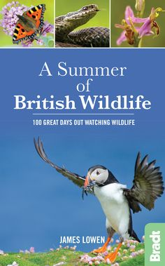 A Summer of British Wildlife. 100 great days out watching wildlife. Winner, Travel Guide Book of the Year Bradt Travel Guides, Great Days Out, British Wildlife, Summer Sky, Travel Guides, My Books, The 100, This Book, Year 2016, Guide Book