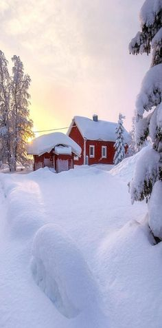 Snow covered red house (or barn) - Sissy Fischer - Winter Szenen, I Love Winter, Winter Cabin, Winter White, Natural Swimming Ponds, House Of Beauty, Snow Scenes, Winter Photos, Winter Beauty