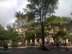 Academia Colombiana de la Lengua, Bogotá-Colombia.