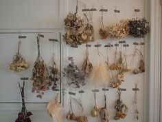 another way to make things look and feel different: Dried flowers