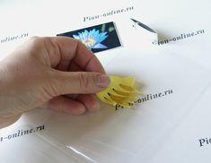 Лотос « Керамическая флористика. Цветы из холодного фарфора. Уроки и…