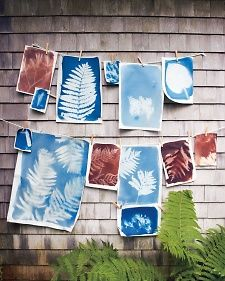 How to Make Sunprints | Step-by-Step | DIY Craft How To's and Instructions| Martha Stewart