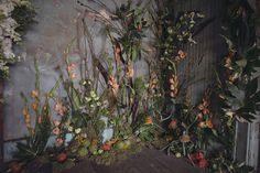Florists Turn Abandoned House Into Flower Sanctuary (18 Photos)