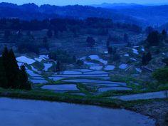 幻想風景を期待した松代・星峠の棚田 - 壁紙自然派 Japon