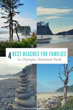 62 Best Trip Pins - Staycation Fun in the PNW images in 2019