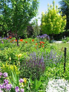 Spring garden in full bloom!!
