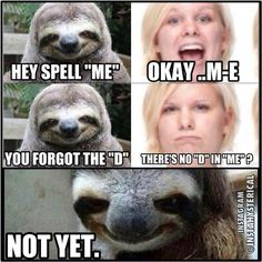 I'm sorry...rape sloth amuses me to no end.