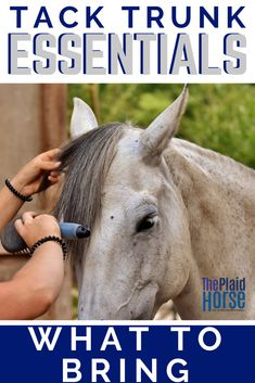 Have you ever forgotten to pack something at a horse show? Here's a list of essentials to bring in your tack trunk so you never have to go through that fear again. #whattopack #tacktrunk #theplaidhorse Tack Trunk, Fly Spray, Horse Magazine, Mane N Tail, Black Sharpie, Horse Care, What To Pack, Blue Ribbon, Show Horses